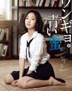 韓国のエロい官能映画おすすめ人気ランキング